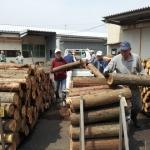 木の駅白山へ薪原木の搬入
