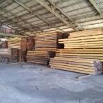 集積場内の材木1