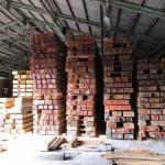 集積場内の材木2