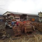 「木の駅白山」を開催しました。