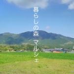 11/3(土)『暮らしの森マルシェ』に参加します!