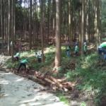 「セブンの森」秋イベントで森の整備をしました!