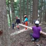 地元の中学生に林業体験をしてもらいました