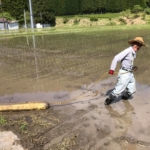 田植えです。今年も米作りシーズンがスタートしました!